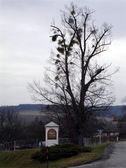 Kaplička Líšnice