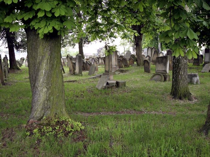 židovský hřbitov v Úsově