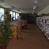 pohled do knihovny