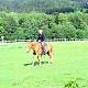 Ranč Mustang Loučná